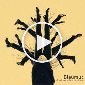 blaumut - el primer arbre del bosc