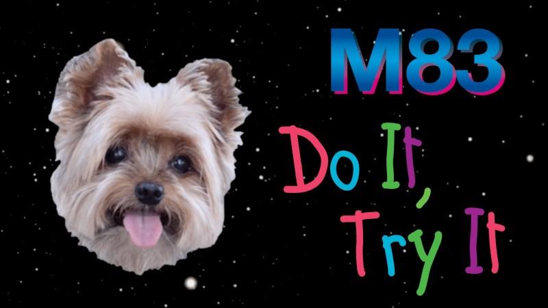 Do It Try It