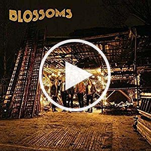 Blossoms – Blossoms